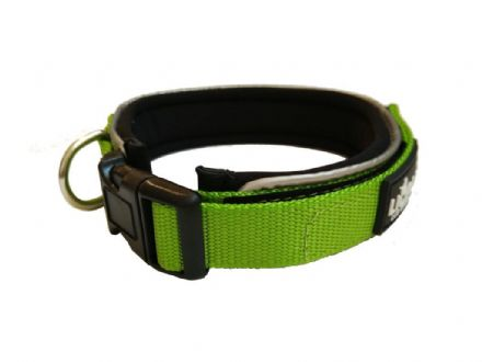 Lime Padded  Collar - Large